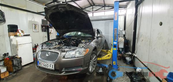 jaguar ostalo